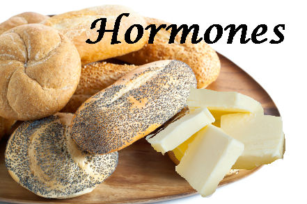 Fat, Carbs and Hormones, Oh My!